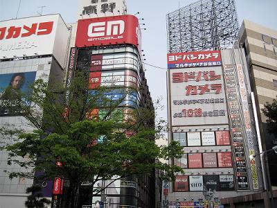 20100504_yanbaru_01.jpg