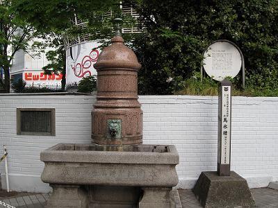 20100504_yanbaru_09.jpg