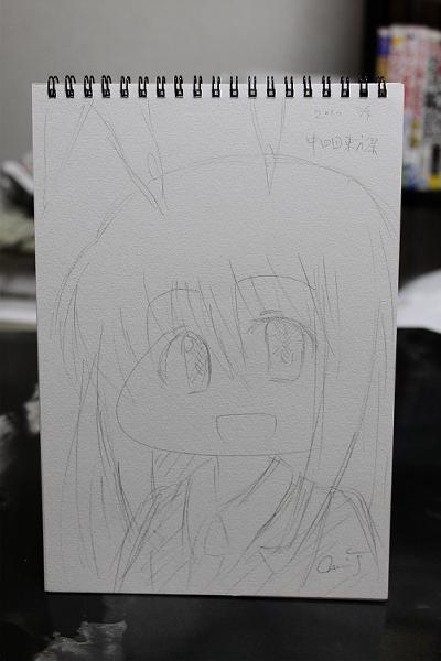 20100704_tyushikokusai_008.jpg