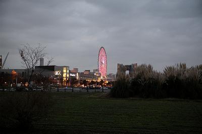 20101219_165038.jpg