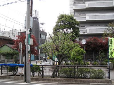 20100429_ruchakai_03w1024